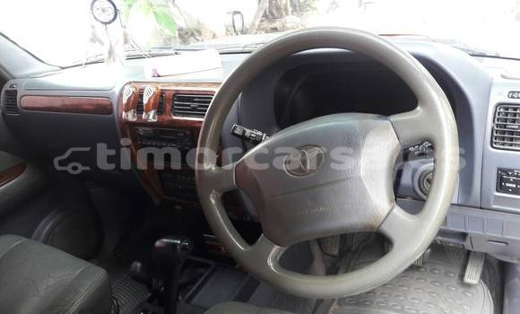 Buy Used Toyota Land Cruiser Prado Other Car in Ermera in Ermera