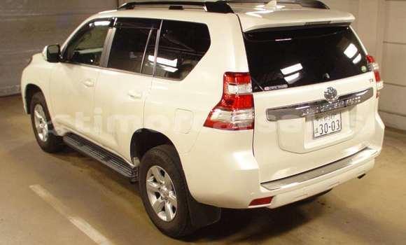 Buy Used Toyota LandcruiserPrado Other Car in Maliana in Bobonaro