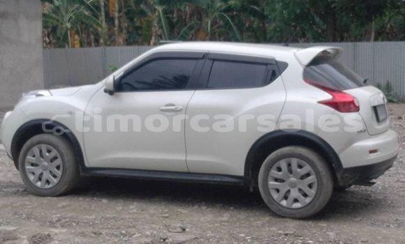 Buy Used Nissan Juke Other Car in Maliana in Bobonaro
