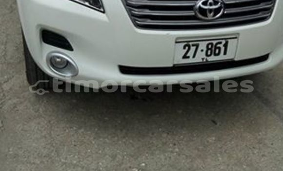 Buy Used Toyota Vanguard Other Car in Aileu in Aileu