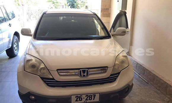 Buy Used Honda CR-V White Car in Dili in Dili