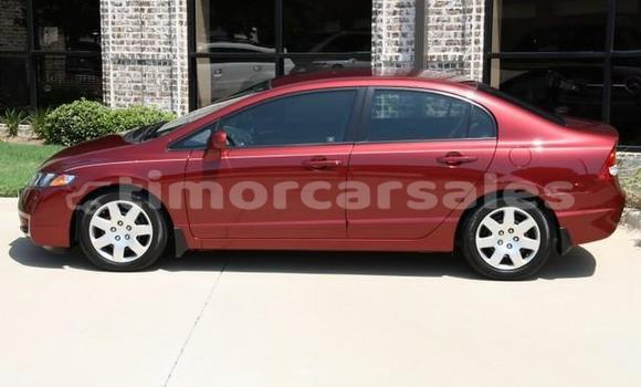Buy Used Honda Civic Other Car in Ermera in Ermera