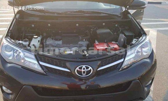Buy Import Toyota RAV4 Black Car in Import - Dubai in Aileu