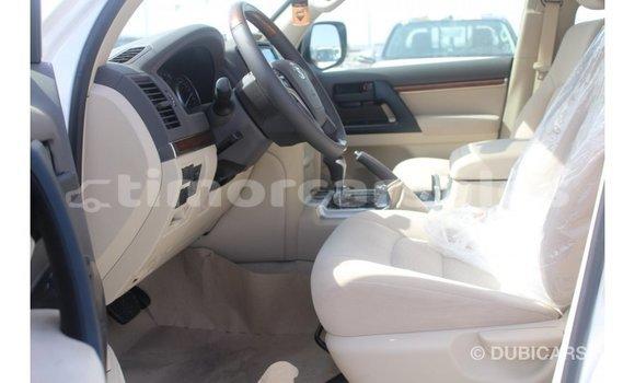 Buy Import Toyota Land Cruiser White Car in Import - Dubai in Aileu