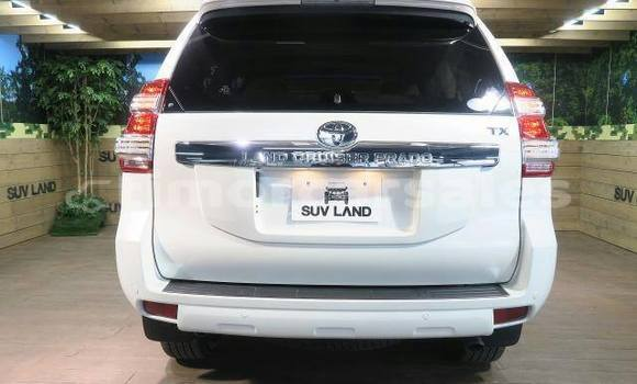 Buy Used Toyota Land Cruiser Prado Other Car in Bazartete in Liquica